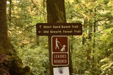 Oregon coast Short Sand Beach