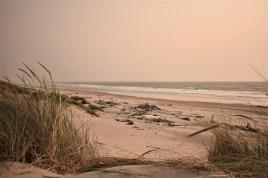 Oregon Coast Nehalem Bay