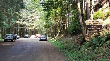Hart's Cove Trail Oregon