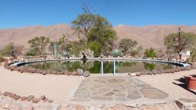 Camp Gecko pool