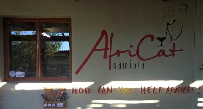 Africat Foundation
