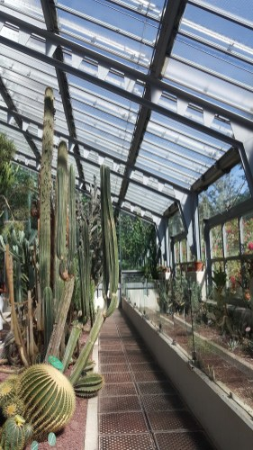 Jardin botanique Rpyal Madrid