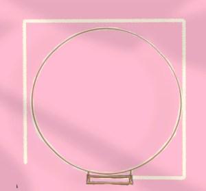 ronde frame