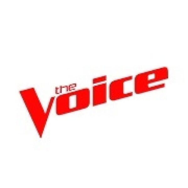 the voice logo_1446470734522.jpg