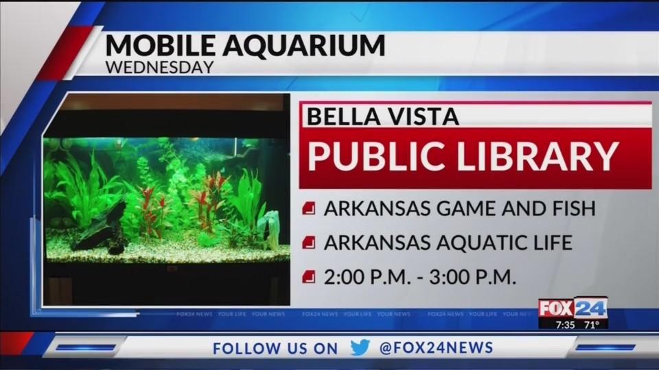 Mobile_Aquarium_Comes_to_Bella_Vista_0_20180711124509