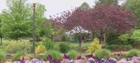 Botanical Garden of the Ozarks_1556938851087.JPG.jpg