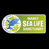Manly Sealife Sanctuary - Click to visit website