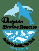 Dolphin Marine Rescue