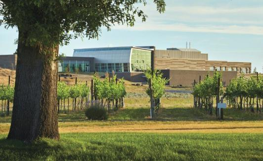 WSU Wine Science Center