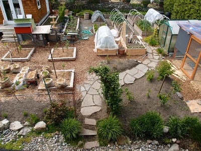 Birds Eye View: An Overview Of The Garden