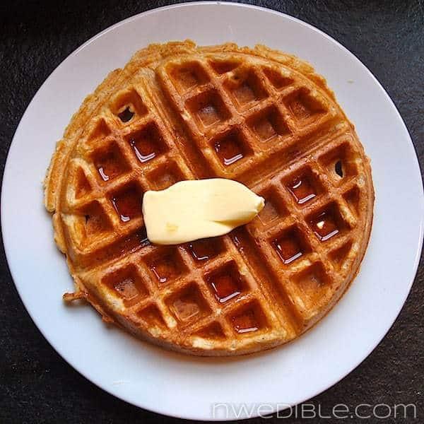 Whole Wheat Waffle Overhead