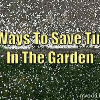 Less Time Garden