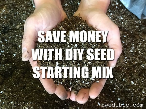 Save Money With DIY Seed Starting Mix