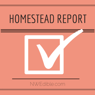 Homestead Report