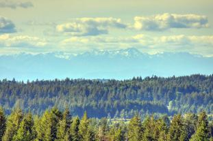 T90-Mountain-View_1280x