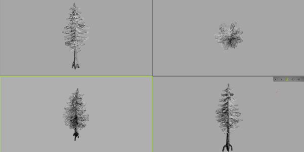 M14_obj___Barovian_Trees_Pine_Large_01