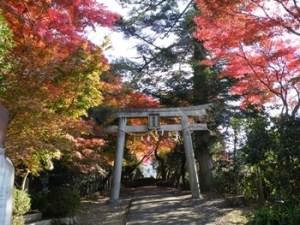 西江寺 箕面の紅葉スポット