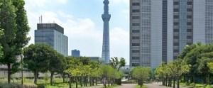 隅田川花火が見えるスポット|東白髭橋公園