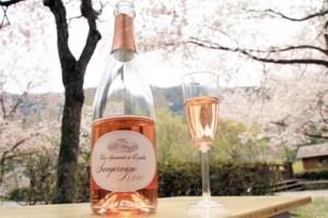 花見にスパークリング日本酒
