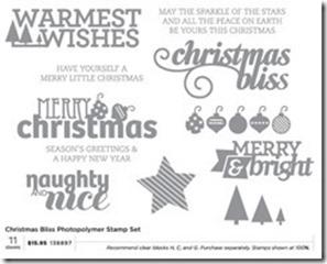 christmas bliss stamp set_thumb