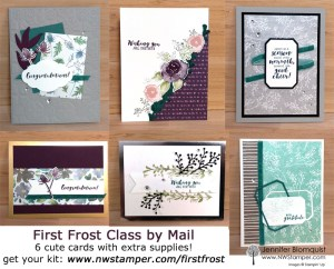 Class by Mail - Make cards using the First Frost bundle
