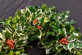 Wreath (Holly)