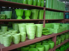 Bright Greens