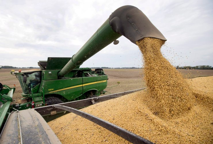 Farm equipment harvesting soybeans
