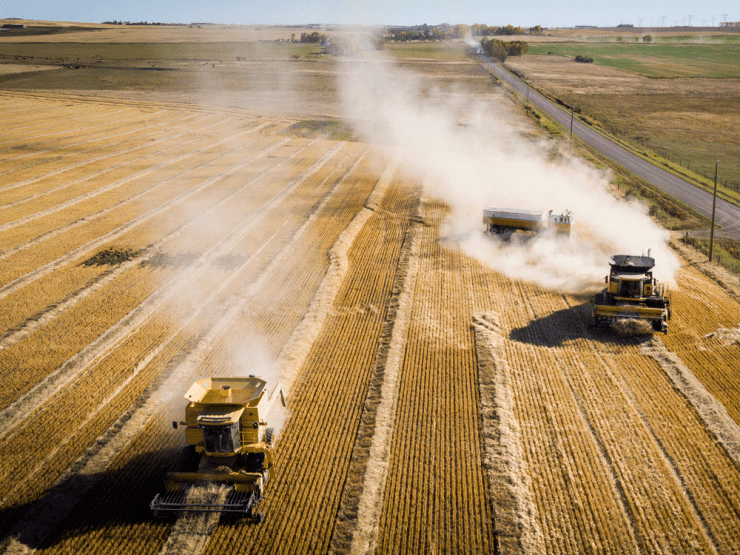 More than half of all the crops and livestock produced in Canada are now exported to another country to be 'processed,' according to a recent federal government report.