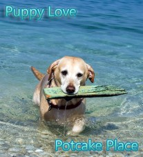 Potcake Place - Island Getaway Where You Cuddle Rescue Puppies Galore