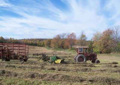 Doody Dairy Farm