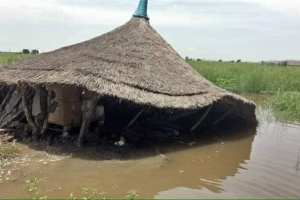 Housing are collapsing to flood and heavy rains in South Sudan's Manime Island, Ayod County(Photo credit: Lony Dak Gatdien)