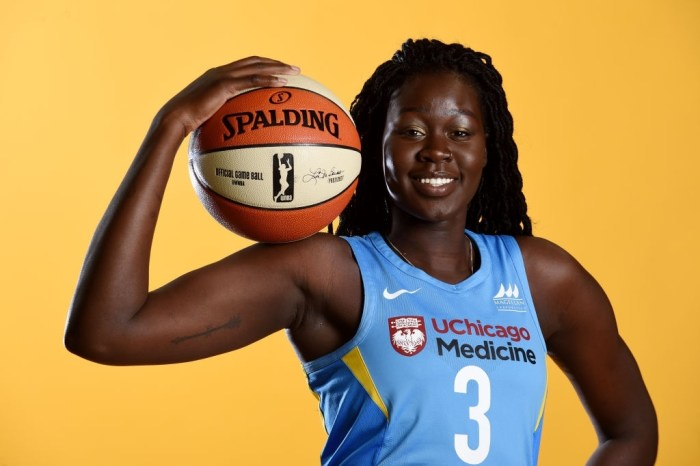Female basketball star itches for AfroBasket qualifiers