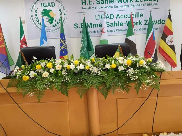 IGAD exerts pressure on parties to swear-in parliamentary appointees