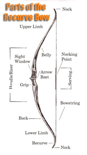Recurve Bow Hunting