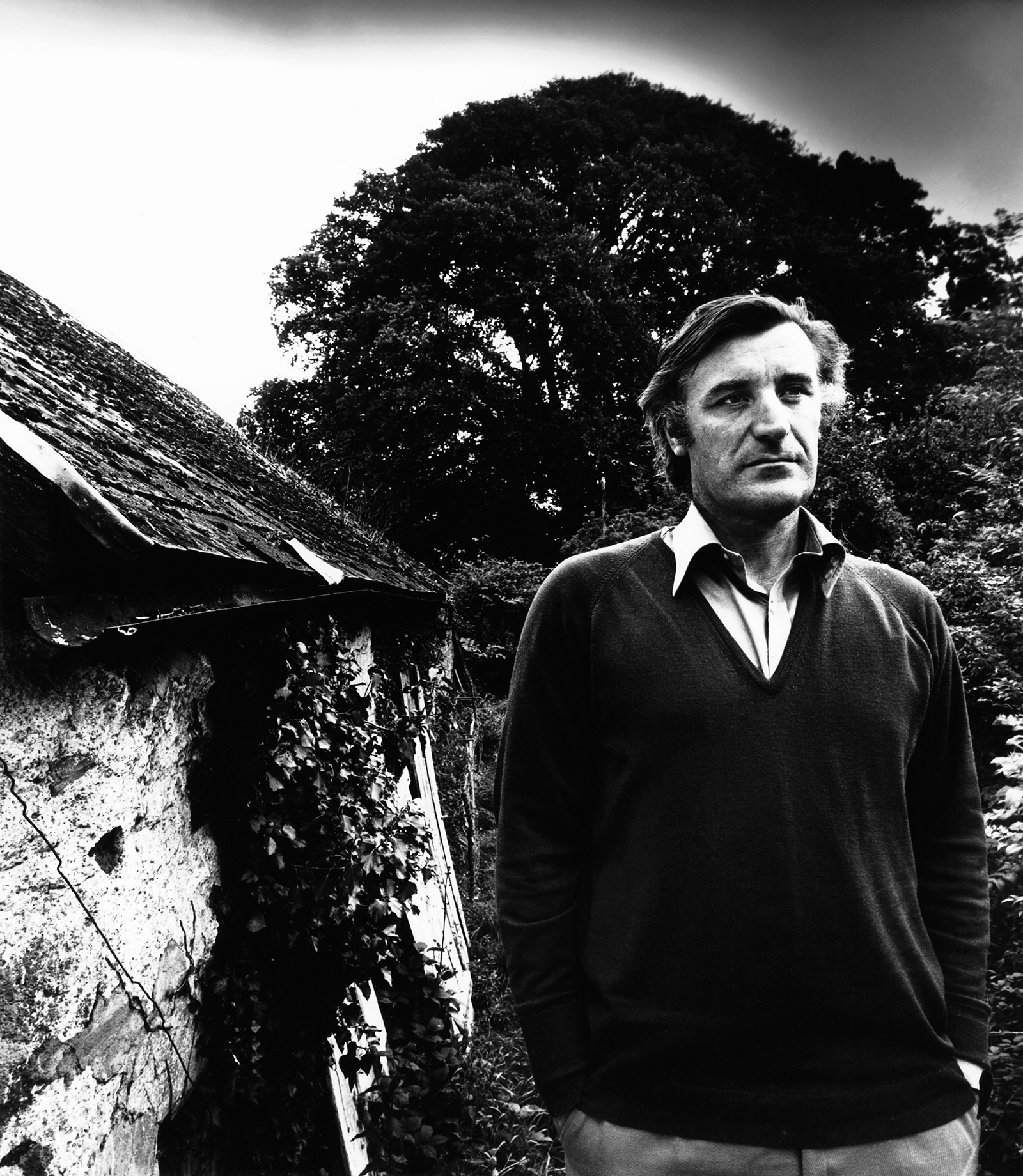 Image result for ted hughes