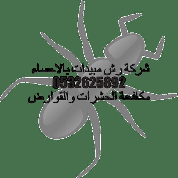 شركة رش مبيدات بالاحساء 0532625892