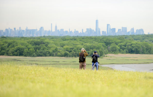 two park guests use binoculars to look out from a meadow in Freshkills Park to the the forest and Manhattan skyline