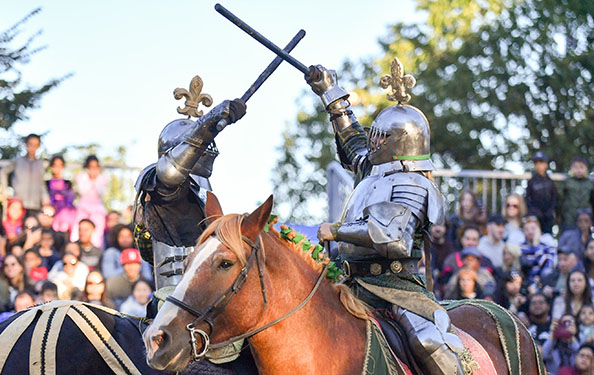 knights in horseback participate in a joust