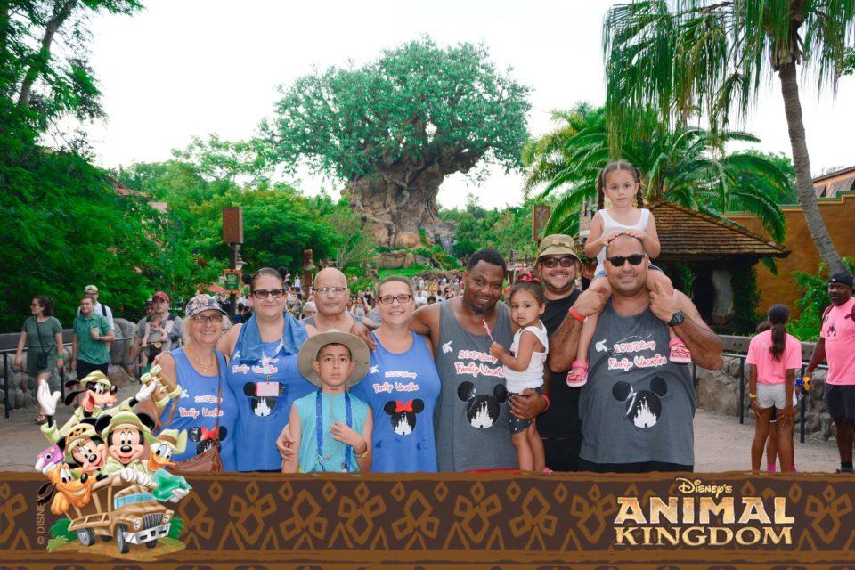 Disney Family Vacation - Animal Kingdom
