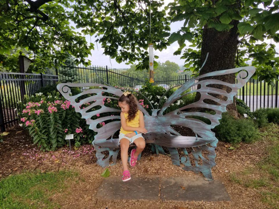 Hershey Gardens Butterfly