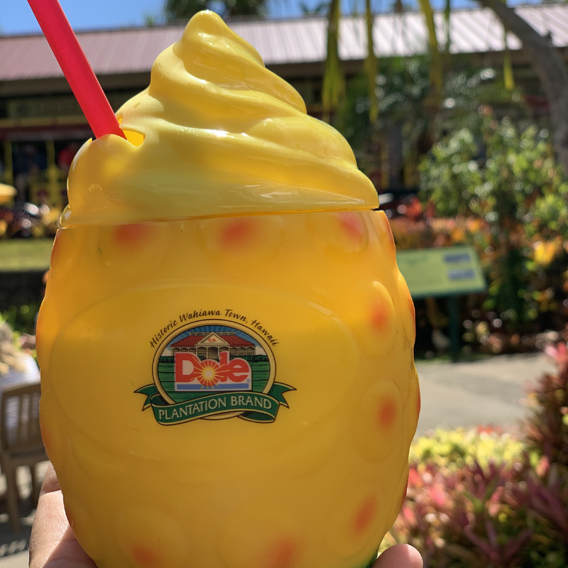 Visiting the Dole Plantation with Kids