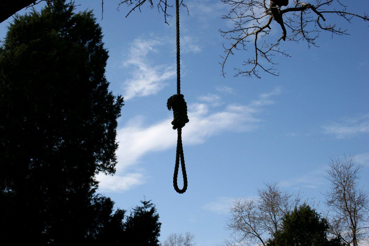 Nooses found hanging in tree, Oakland California
