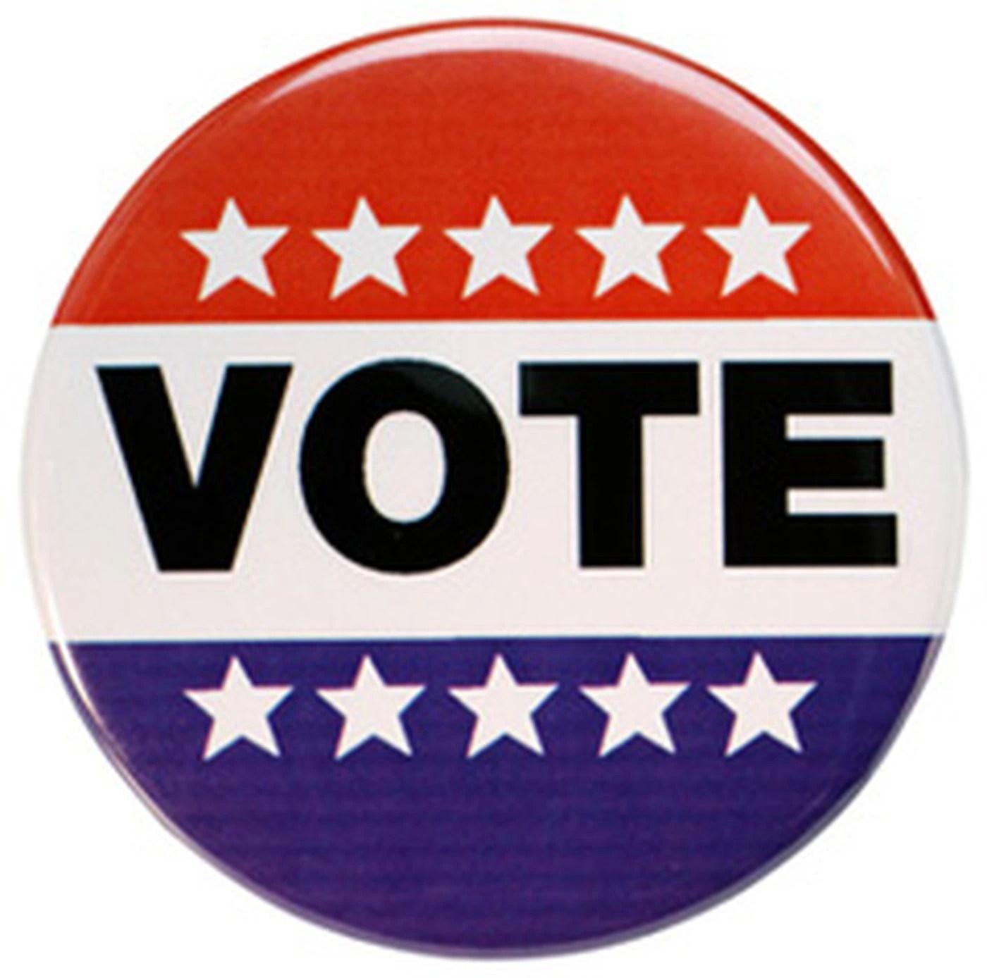 Image result for vote sign