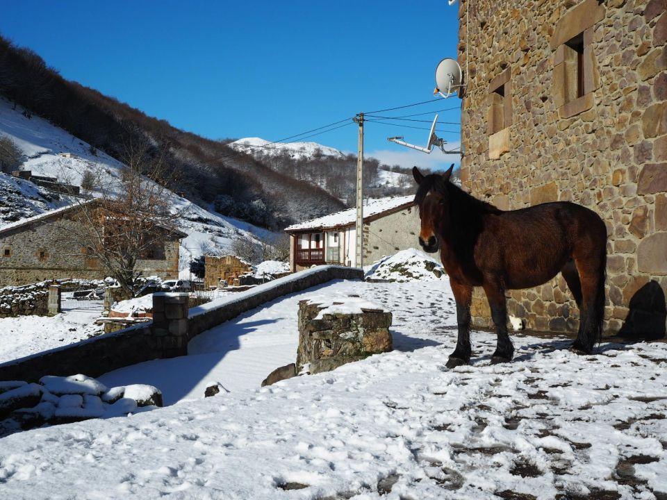 tresabuela, rural