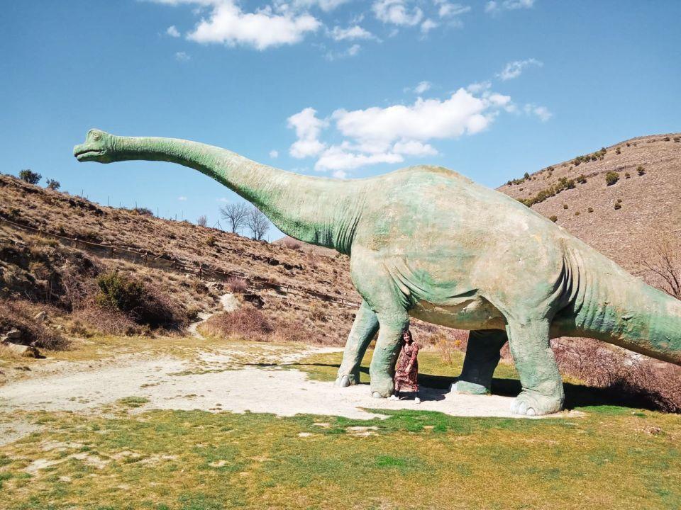 dinosaurios, enciso