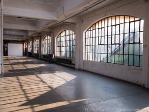 nyc-daylight-studio-010