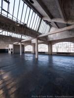 nyc-daylight-studio-015