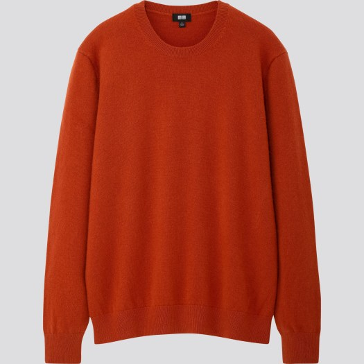 Men's Cashmere Crew Neck Long Sleeve Sweater in 26, $149.90