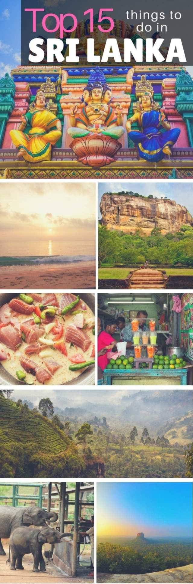 Fun things to see do and eat in sri lanka